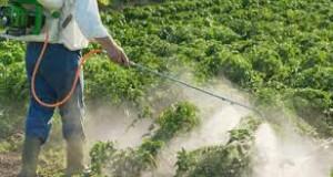 Hemikalije u poljoprivredi 1