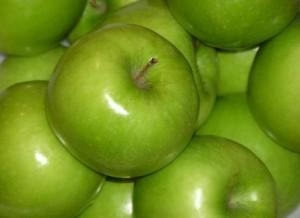 Kako odabrati sortu jabuke za uzgoj